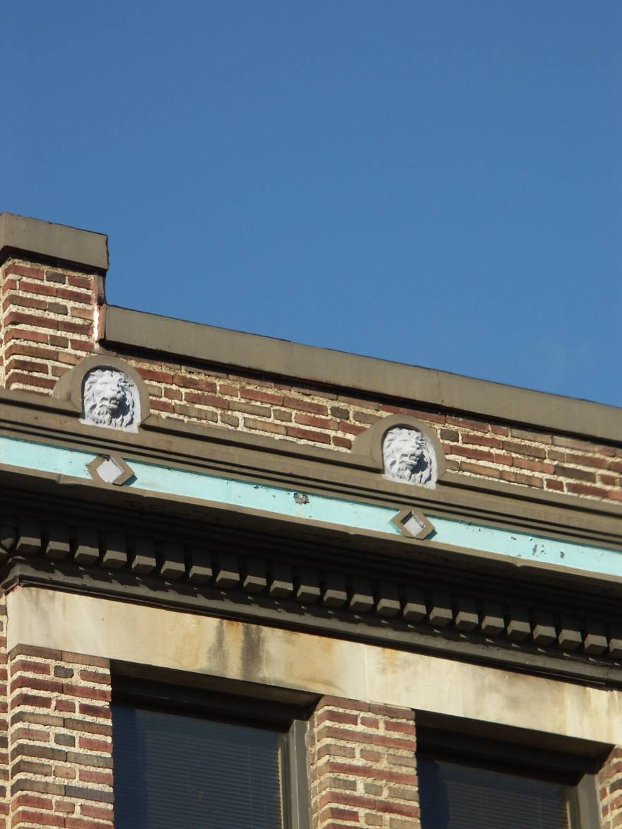 Lions of North                   Avenue